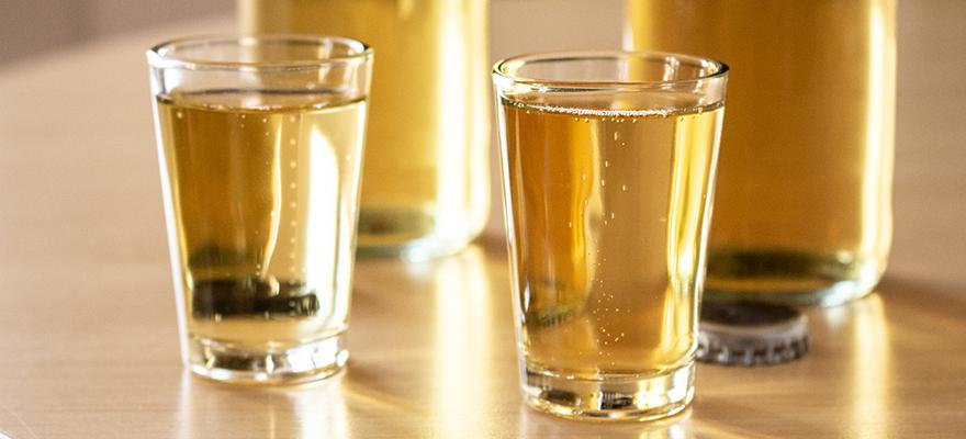 Zwei gefüllte Gläser mit Bier, bereit für die Degustation