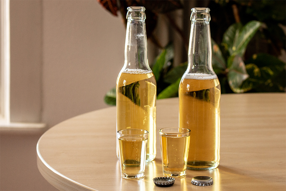Zwei Bierflaschen und zwei gefüllte Gläser, bereit zur Degustation